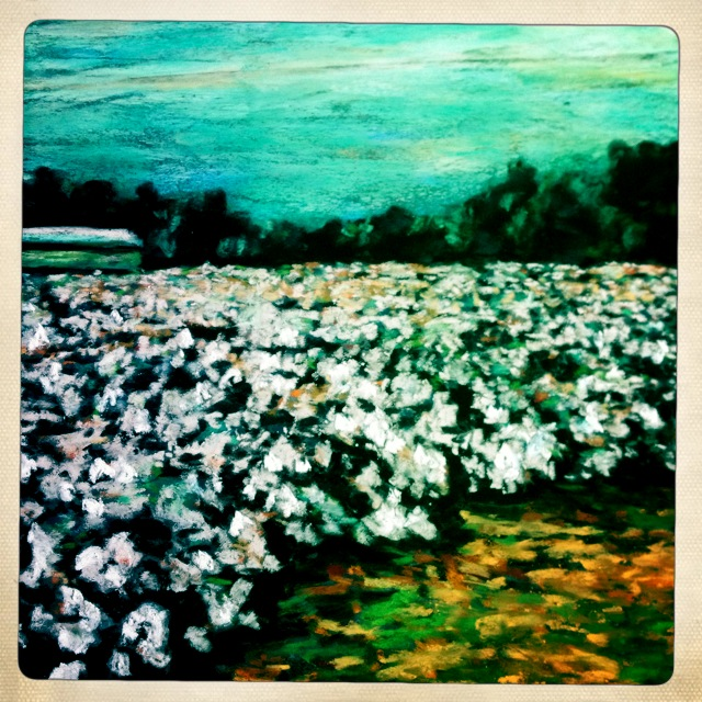 cotton field complete