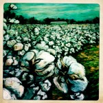 foreground cotton complete