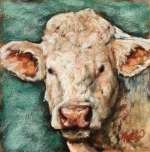 """Moo,"" 8x8 pastel on card"