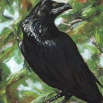 The Raven, 8x10 pastel in frame. Was $175, now $87