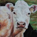 Curious, 9x12 pastel in frame, winner Best of Show, Hampton Fine Art Gallery Juried Show 2010.Was $250, now $125 SOLD