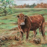 Brown Cow, 8x10 pastel in matte & frame.Was $250, now $125 SOLD