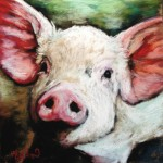 Oink, 8x8 pastel on card