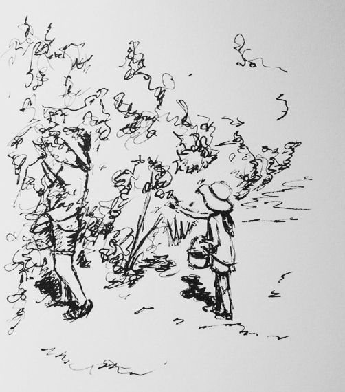 Blueberry Picking, ink doodle