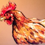 Chicken, 11x14 pastel $275 framed