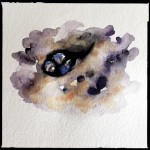 Sea snails tucked in a rock, watercolor