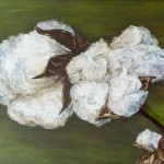 Cotton Boll, 18x24 pastel framed. Was $425, now $275!